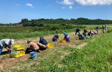 石川県の就労継続支援A型JOY