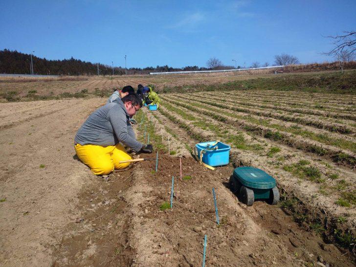 JOYWORKZの農作業